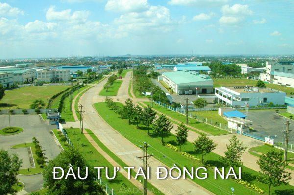 dau-tu-tai-dong-nai-1024x682